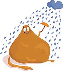 кот под зонтиком - карикатура