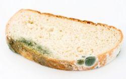 Хлеб, пораженный плесенью