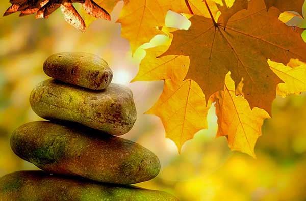 камушки и листики