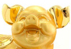 желтая свинья