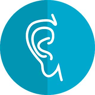 изображение уха