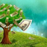 деревце и доллары