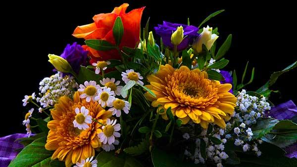 разноцветный букет