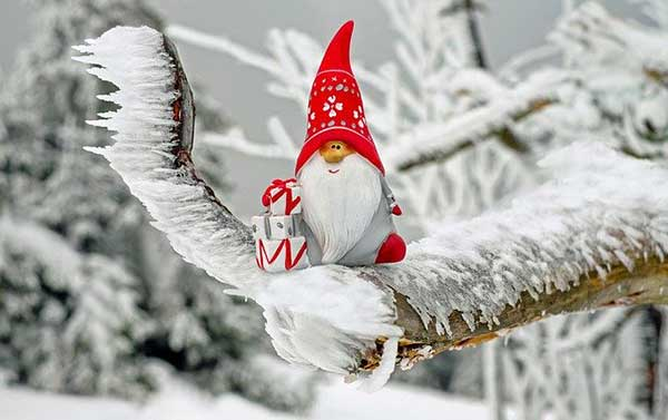 Санта Клаус на елочке